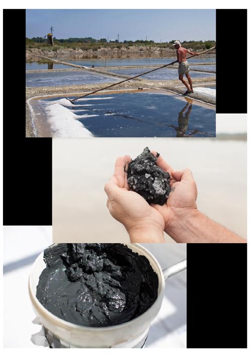 lavorazione dei fanghi alle saline di Cervia